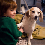What Are the Best Small Dog Breeds for Children?