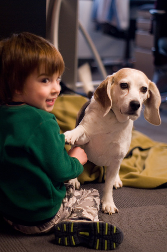 Dogs and children can get along great together when you find the right fit. Photo courtesy kaley davis, Flickr
