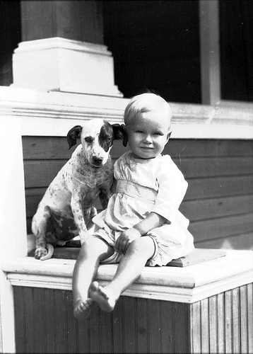 Children and dogs can be the best of friends with proper training and supervision.