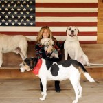 Learn How Jill Rappaport Advocates For Dogs