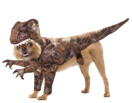 AnimalPlanet_Raptor_Dog_Costume