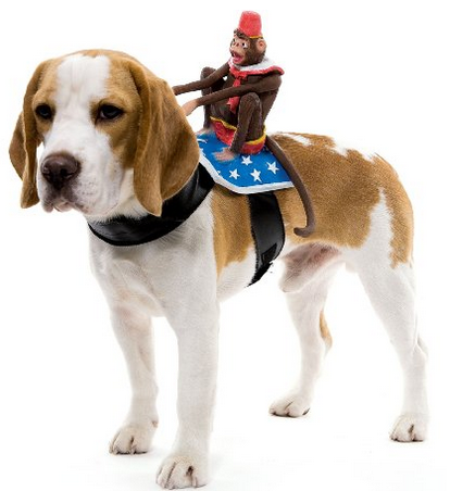 Dog Riders Monkey Costume Dog