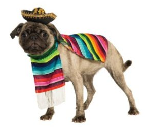 pug-mexican