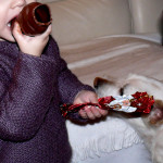 What Holiday Treats to Avoid for Your Small Dog