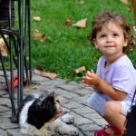 Do Small Dogs and Children Go Together?