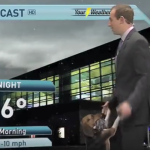 Why Weather Forecasts and Dogs Don't Mix