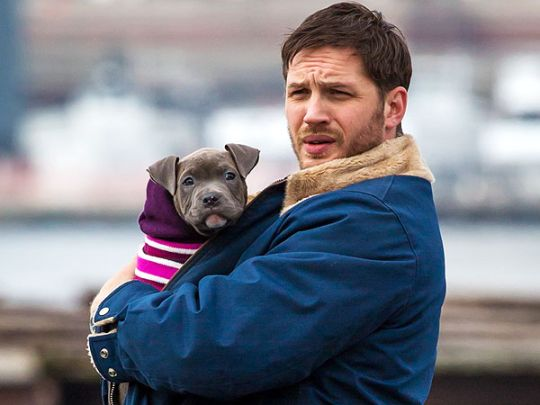 Tom Hardy and his pit bull puppy. Photo courtesy Yahoo.com.