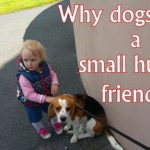 Why Dogs Need a Small Human Friend?
