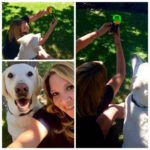 Easy Selfies With Your Dog: Pooch Selfie Holds A Ball On Your Phone