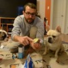 How to Clean French Bulldog Face and Folds