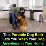 BARKBATH™: Portable Dog Bath Lets You Wash Your Dog Anywhere In Your Home