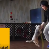 Beagle Is The Best In The World AT Jumping Rope