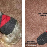 Repurposing the Novelty Socks You Received as Christmas Gift into a Cute Outfit for Your Small Dog